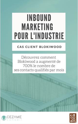 Cas client Blokiwood.png